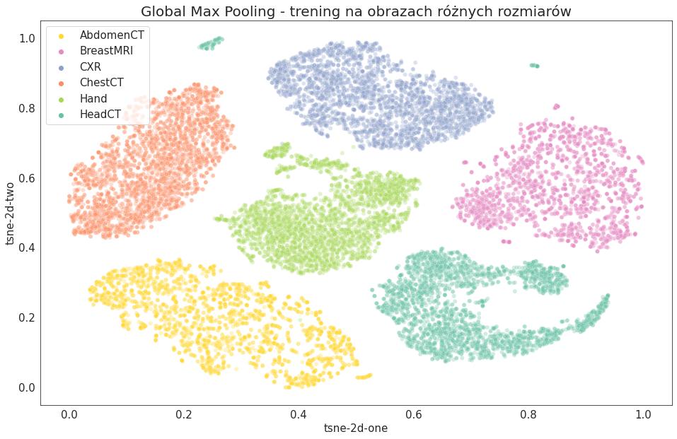 Wizualizacja t-SNE - 2D - Global Max Pooling - trening na obrazach różnych rozmiarów