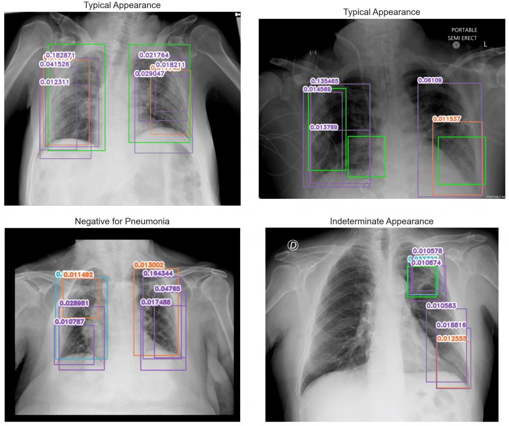 Przykładowe predykcje modelu 5 - te same obrazy jak dla modelu 3. Wiele obiektów - różnych klas nawet na tym samym obrazie - wykrytych na każdym z obrazów.